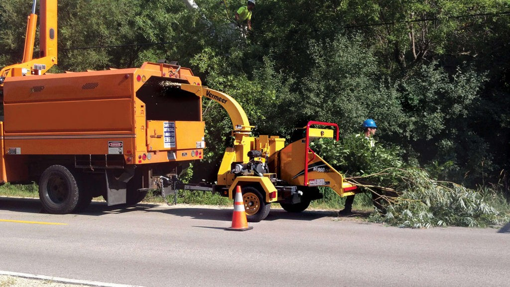 Commercial Tree Services-Springfield Tree Trimming and Stump Grinding Services-We Offer Tree Trimming Services, Tree Removal, Tree Pruning, Tree Cutting, Residential and Commercial Tree Trimming Services, Storm Damage, Emergency Tree Removal, Land Clearing, Tree Companies, Tree Care Service, Stump Grinding, and we're the Best Tree Trimming Company Near You Guaranteed!