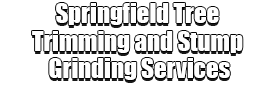 Springfield Tree Trimming and Stump Grinding Services Logo-We Offer Tree Trimming Services, Tree Removal, Tree Pruning, Tree Cutting, Residential and Commercial Tree Trimming Services, Storm Damage, Emergency Tree Removal, Land Clearing, Tree Companies, Tree Care Service, Stump Grinding, and we're the Best Tree Trimming Company Near You Guaranteed!