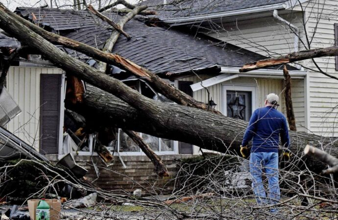 Storm Damage-Springfield Tree Trimming and Stump Grinding Services-We Offer Tree Trimming Services, Tree Removal, Tree Pruning, Tree Cutting, Residential and Commercial Tree Trimming Services, Storm Damage, Emergency Tree Removal, Land Clearing, Tree Companies, Tree Care Service, Stump Grinding, and we're the Best Tree Trimming Company Near You Guaranteed!