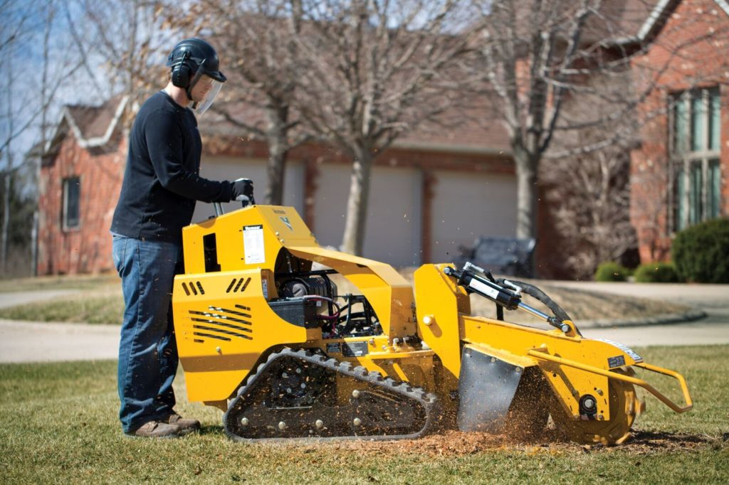 Plano-Springfield Tree Trimming and Stump Grinding Services-We Offer Tree Trimming Services, Tree Removal, Tree Pruning, Tree Cutting, Residential and Commercial Tree Trimming Services, Storm Damage, Emergency Tree Removal, Land Clearing, Tree Companies, Tree Care Service, Stump Grinding, and we're the Best Tree Trimming Company Near You Guaranteed!